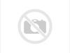 Radiator grill TOYOTA LAND CRUISER  (8679060200), 3LT1-3774